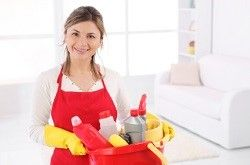 domestic cleaners w1