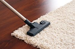 carpet cleaning sw1